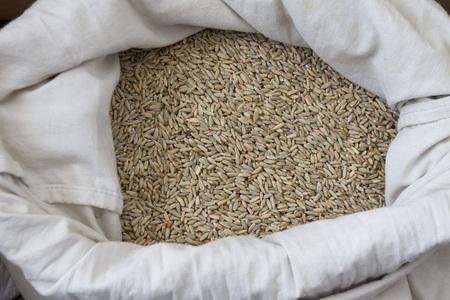 Fresh organic Einkorn wheat grains in white sack, top view of healthy food