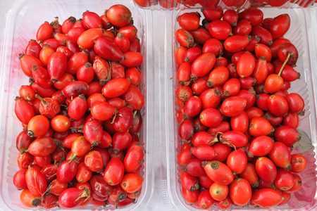Hips. Rose hips. Fresh organic red rose hips in plastic bowl. Vitamins background. Stock Photo