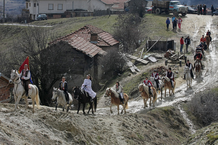 St. Todor 's day. Race with horses and horses pull carts with heavy logs on Todorov day in Bachevo, Bulgaria – march 7, 2009. Parade with horses on the top of the mountain. Horses and their owners participate in old but abusive and painful  ritual on Todo