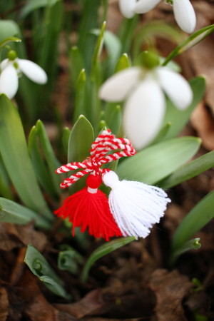 Snowdrops and martenitsa. Symbols of spring. White snowdrop flowers and martisor. Baba Marta holiday. Tradition in Bulgaria. Baba Marta Day. Wallpaper of spring flowers and martenitsa. Baba Marta day