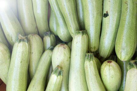 Zucchini. Fresh zucchini, green vegetables  courgette, summer squash. Organic green zucchini pattern. Vegetable background texture