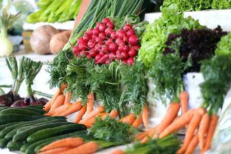 Variety of vegetables on a market. Salads, carrots, cucumbers, radishes and lettuce. Vegetables wallpaper. Banque d'images