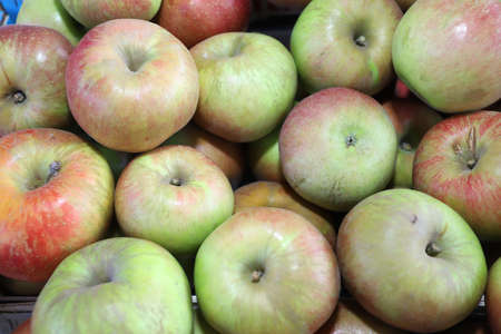 Crunchy green and red apples. Apples pattern.