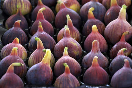 Colorful figs in line or pattern, on daylight. Selective focus. Archivio Fotografico