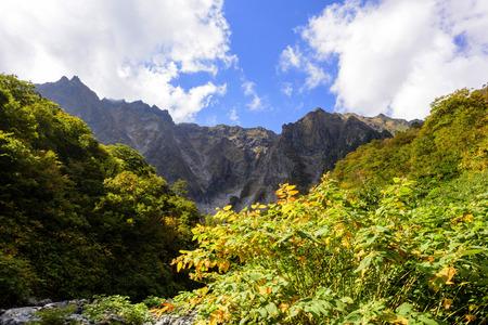 Early autumn of Mt.Tanigawa in Japan