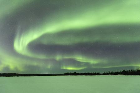 Aurora borealis at Chena Lakes in Alaska Standard-Bild - 119761802