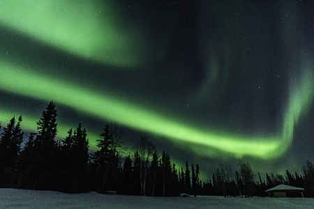 Northern Lights at Chena Lakes in Alaska 版權商用圖片 - 119916290