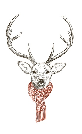 펜, 스카프, 사슴의 잉크 그림