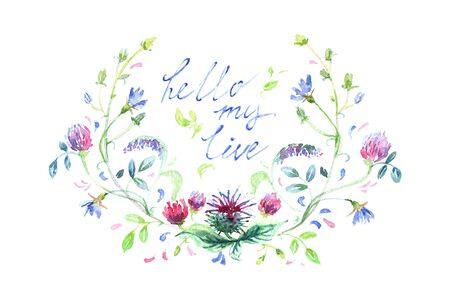Spring flowers painted in watercolor. Hand drawn illustration. Isolated on white background. Painting. The phrase Hi Monday for bloggers. Fresh bouquet. Stock Photo