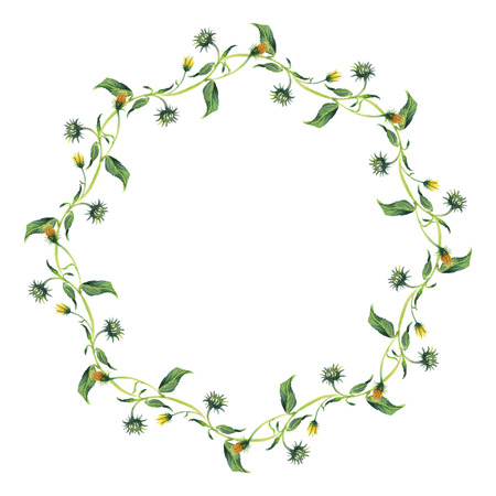 yelloow: Watercolor wreath or garland. Green leaves and yelloow flowers on white background. Can be used as invitation or greeting card, print, your banner or logo.