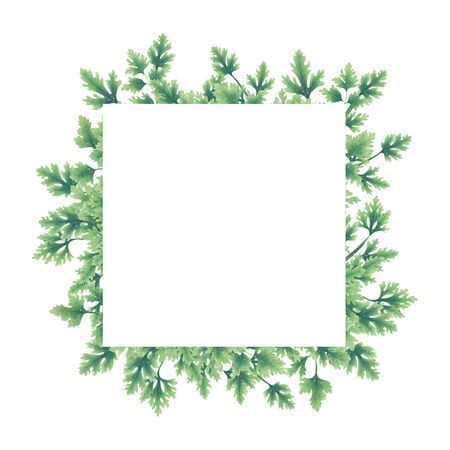 Green parsley leaves at the borders of the illustration. Inside an empty white background.