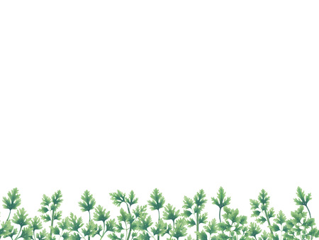 Green parsley leaves at the borders of the illustration on the bottom. Inside an empty white background.