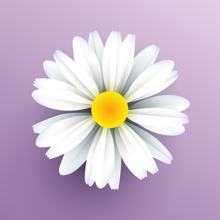Realistic vector paper flower, chamomile are cut from paper. Applicable for web banner, flyer, cards and invitation.