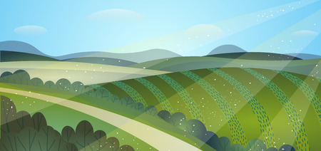 Sunny summer landscape green fields. Crops. The road through the hills.
