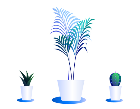 Set of cacti in pots. Illustration of bright color combinations. Icons of blue gradient color in clean minimal style.