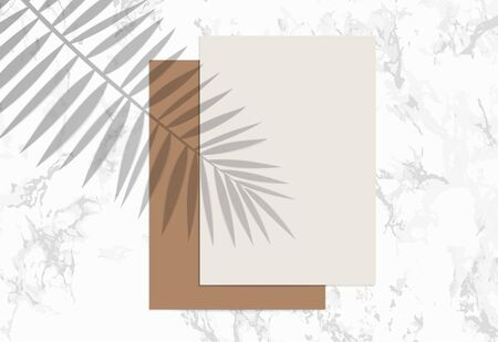 Two A4 Paper sheets on marble background. Mockup with overlay a palm leaf shadow. Natural lighting overlays shadow on top. Scene of Tropical Leaf Shadow from the window. Realistic vector illustration. Ilustrace