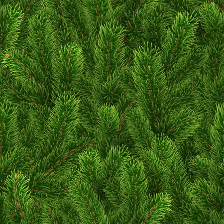 Seamless green pattern. Christmas tree branches 版權商用圖片