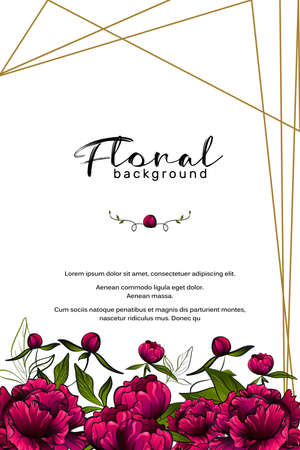 frame made with colorful purple peony flowers and golden geometric lines and space for design with text example on white background 向量圖像