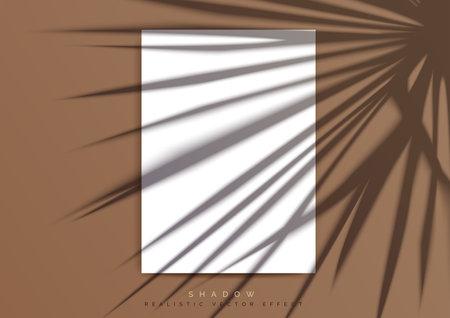 A4 paper Mockup. A transparent Shadow of palm leaf