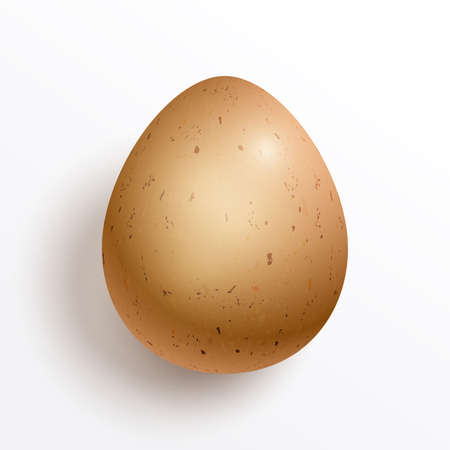 A realistic chicken egg isolated on white background Иллюстрация