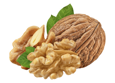 Nut macro. Walnuts as package design element collection. Imagens