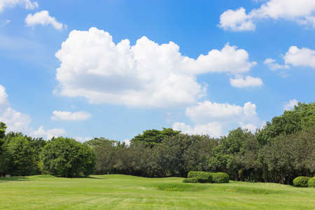 green grass field and blue sky,park in the city Banco de Imagens