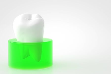 gums: teeth and gums of CG