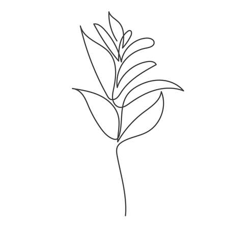 A plant drawn in a vector by one continuous line. Vector illustration