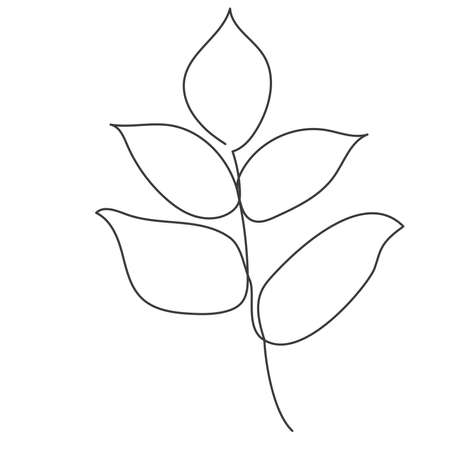 A plant drawn by one continuous line.