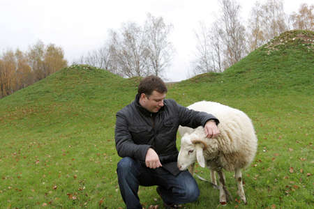 The tourist poses with white sheep on lawn Stock Photo - 3791699