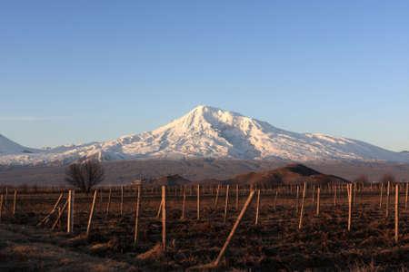 arable land: Mount Ararat behind arable land at daybreak Stock Photo