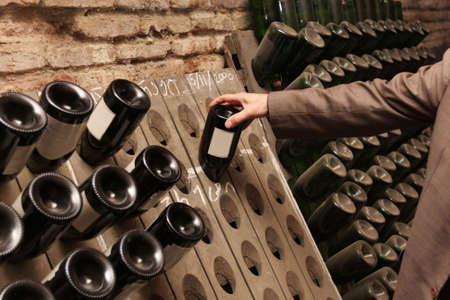 wine industry: A man chooses a wine in wine cellar Stock Photo