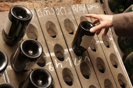 A man takes a bottle of wine in a cellar photo