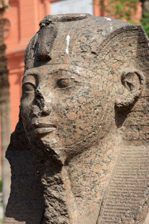 antiquity: Sphinx in the Museum of Egyptian Antiquities