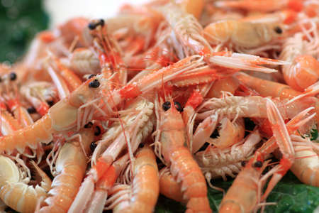 boqueria: Boiled prawns on La Boqueria Market in Barcelona, Spain