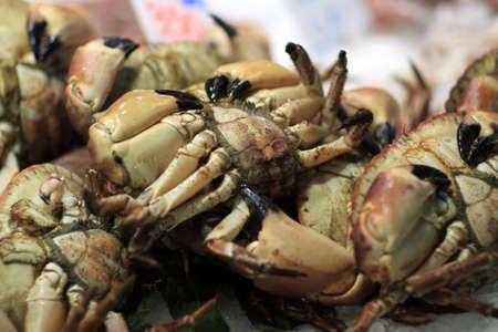 boqueria: Crab for sale at La Boqueria market in Barcelona, Spain Stock Photo