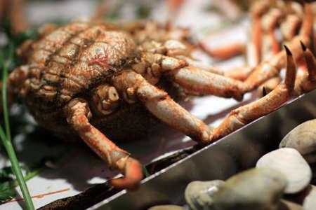 ramblas: Crab on counter at La Boqueria market in Barcelona, Spain