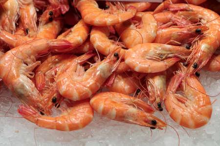 boqueria: Prawns for sale at La Boqueria market in Barcelona, Spain