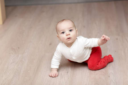 The creeping baby boy on the floor at home Stock Photo - 12580225