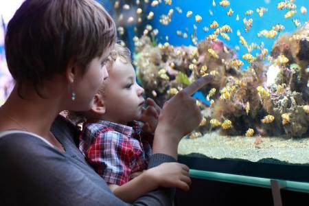 The family has holiday at an aquarium Stock Photo