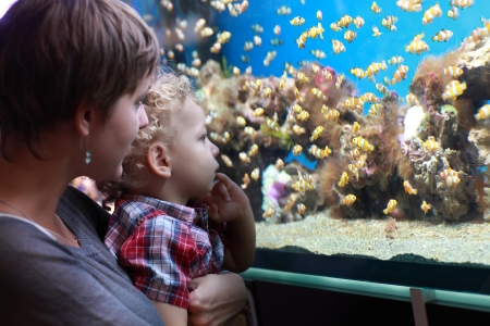 Mother with child have holiday at aquarium