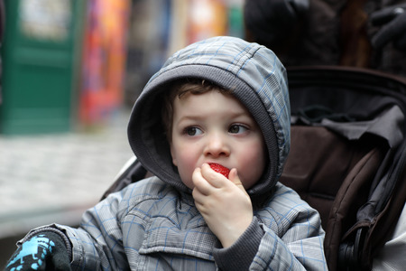 The child eating strawberries in a stroller photo