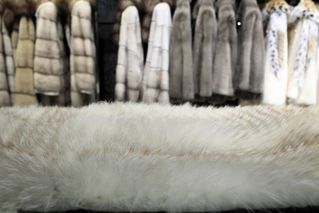 White fur and the coats at a store