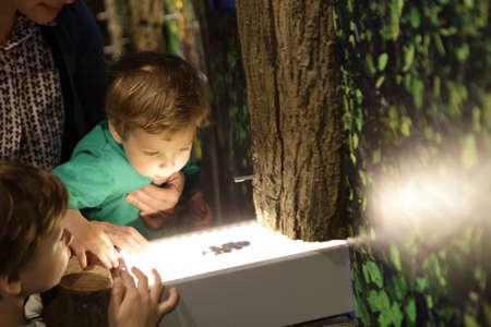 박물관에서 식물 표본 상자를 보는 아이들 스톡 콘텐츠