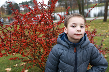 Portrait of a boy in autumn park