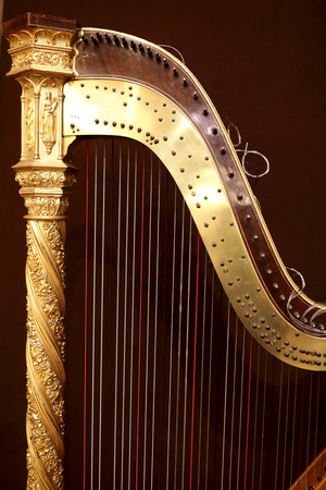 Part of harp on the burgundy background