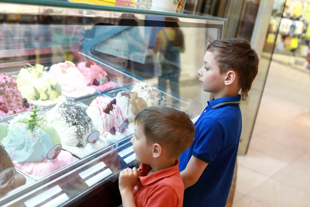Two brothers choosing ice cream in cafe