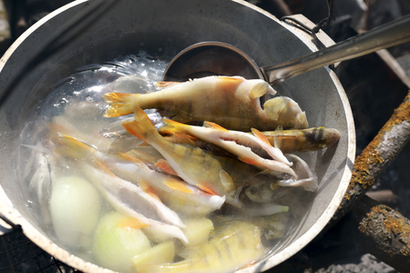 Cooking river fish soup in pot on fire