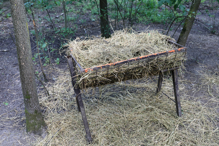 Hay feeder for animals in the forest 写真素材