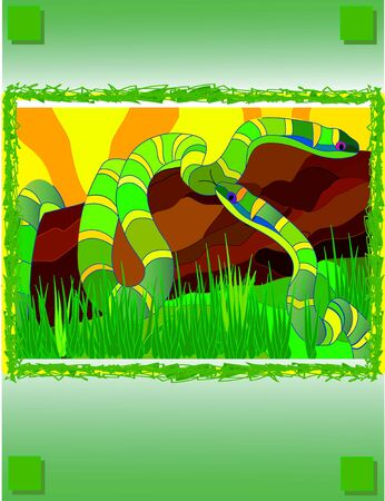 Love games of two snakes in jungle photo